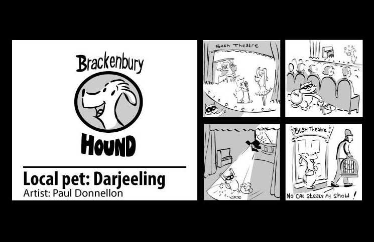 keep-things-local-hound-darjeeling