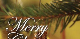 Indian-Zing-Christmas-Menu