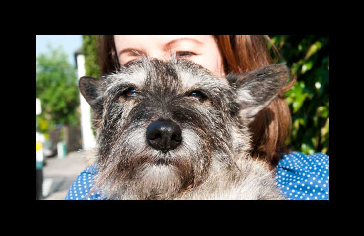 Keep-Things-Local-Pets-treacle